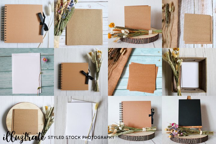 Card & Album Styled Stock Photography Bundle | Dried Flowers