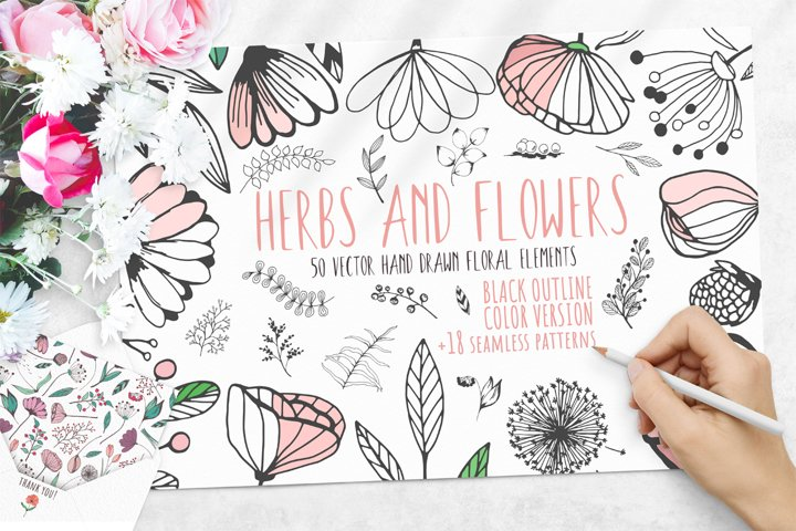 Set of 50 Hand Drawn Floral Elements. 18 Seamless Patterns