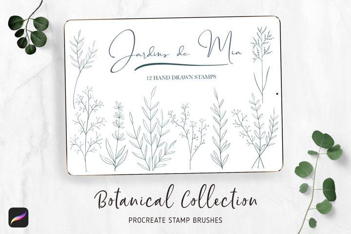 Procreate Botanical Stamp Brushes Garden