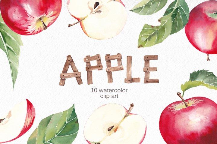 Watercolor Apple Clipart, Fall Illustration