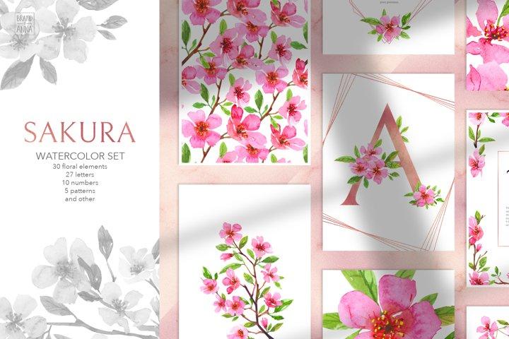 Sakura watercolor set and alphabet