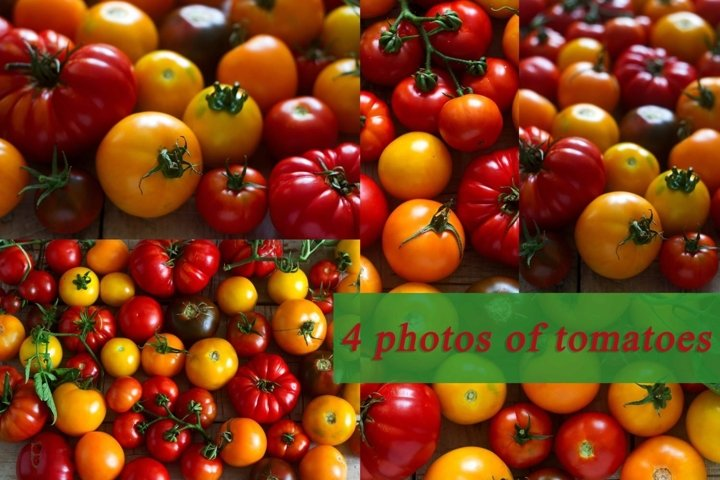 Tomatoes of different varieties.