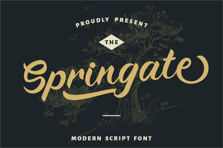 Springate - Modern Script Font