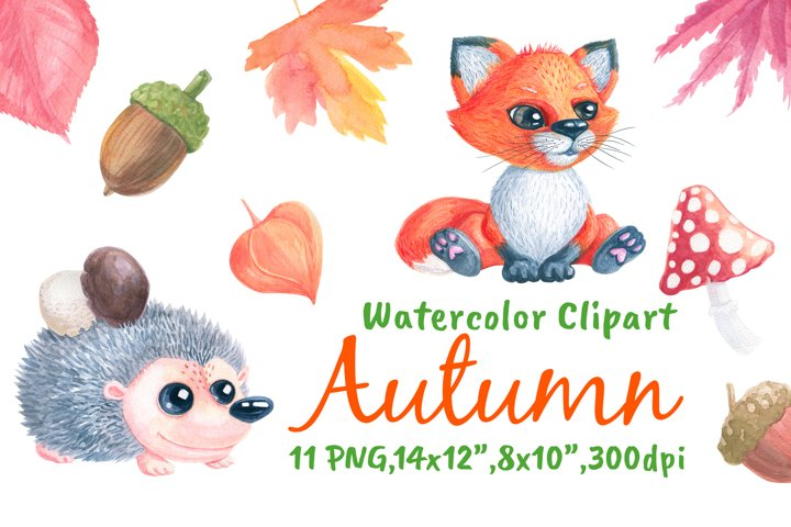 Autumn Hedgehog & Fox Watercolor Png