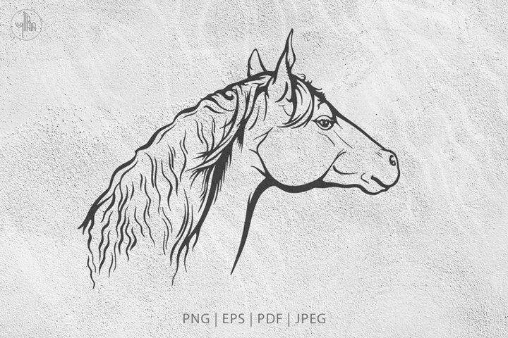 Equine portrait, Ink illustration, vector clipart