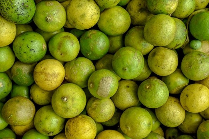 lime in the traditional market