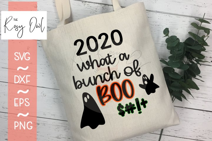Bunch of Boo $#! SVG | Funny 2020 SVG | Funny Halloween SVG