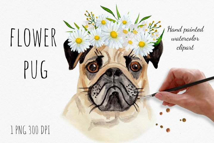 Cute Pug with flowers clipart