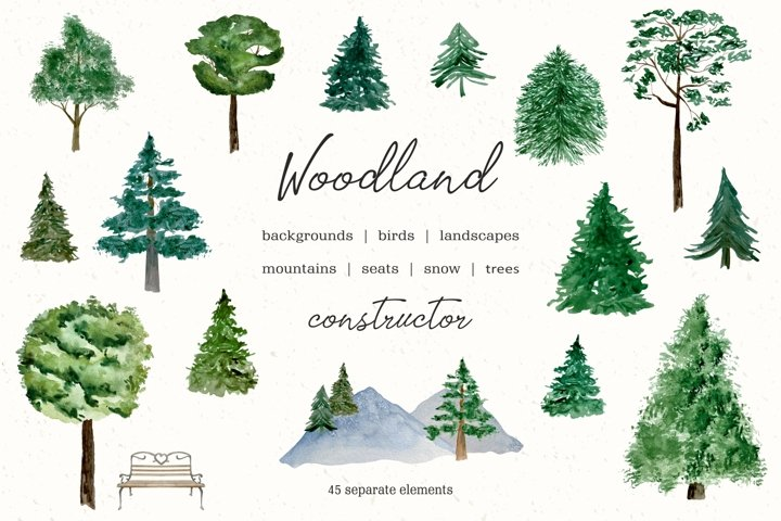 Watercolor Forest Tree Clipart