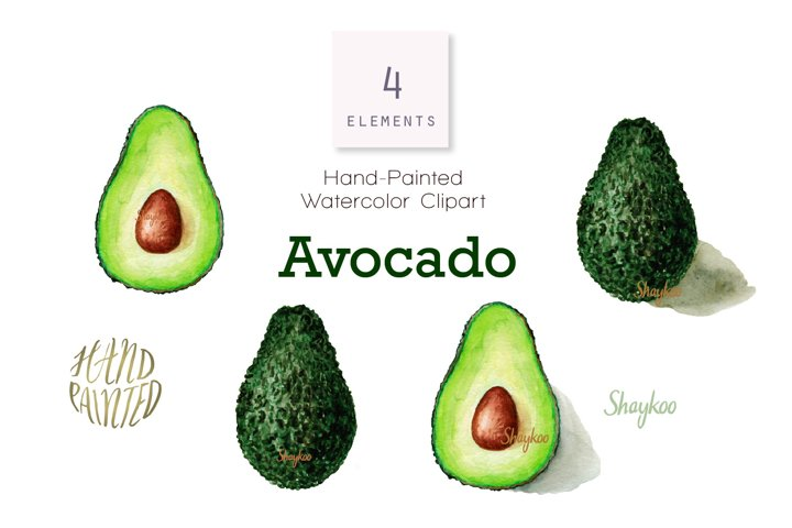 Avocado Fruit Watercolor Clipart, Avocado Illustration