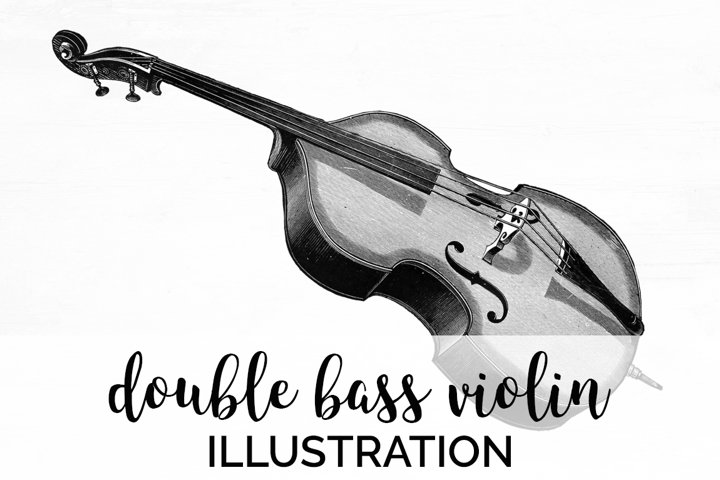 Violin - Vintage Musical Instruments Double Bass Violin