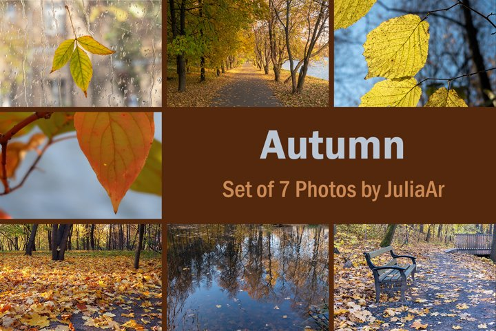 Set of 7 autumn photos. Leaves closeup and landscapes.