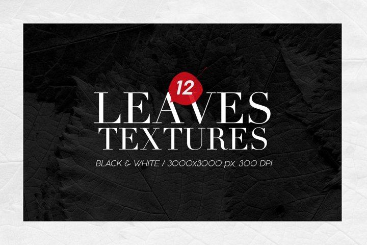12 Black & White Leaves Textures
