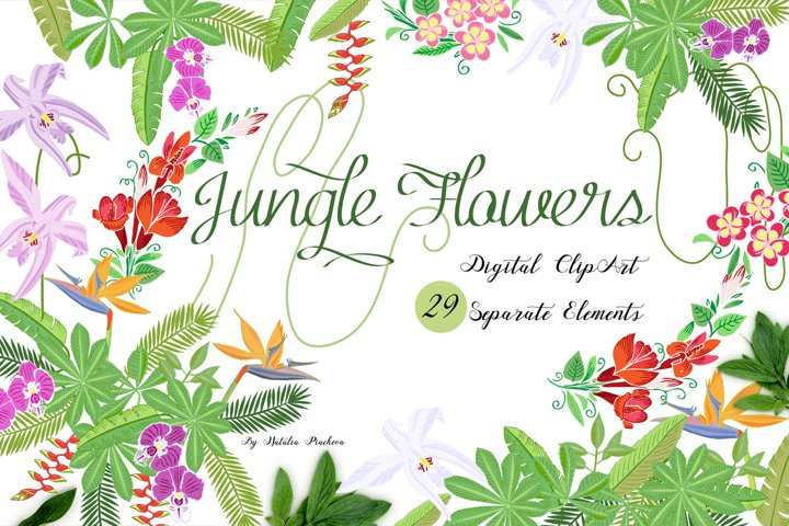 Jungle clipart with flowers