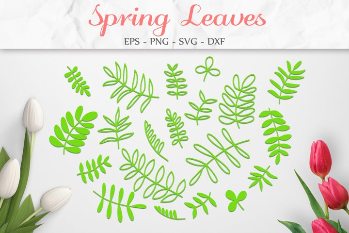 Spring Leaf SVG, Leaves SVG, Floral Clipart, Spring Decor