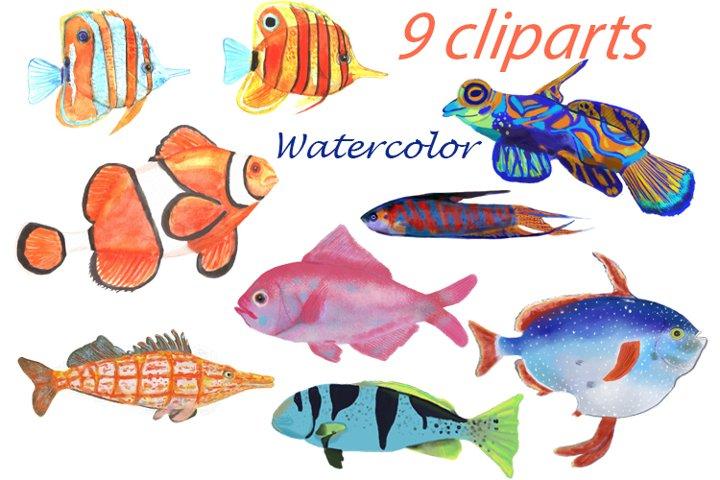 Watercolor fishes Clip Art