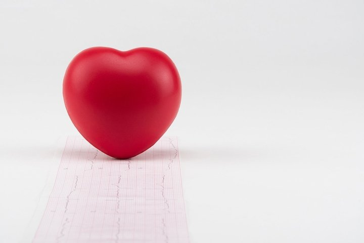Toy heart on electrocardiogram background. Healthcare.