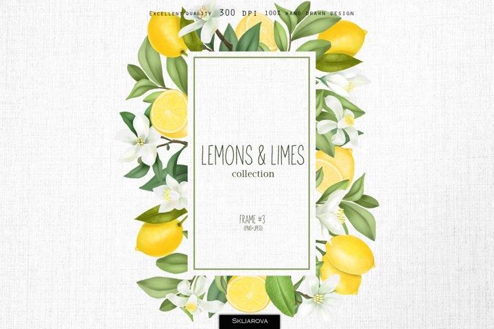 Lemons & limes. Frame #3.