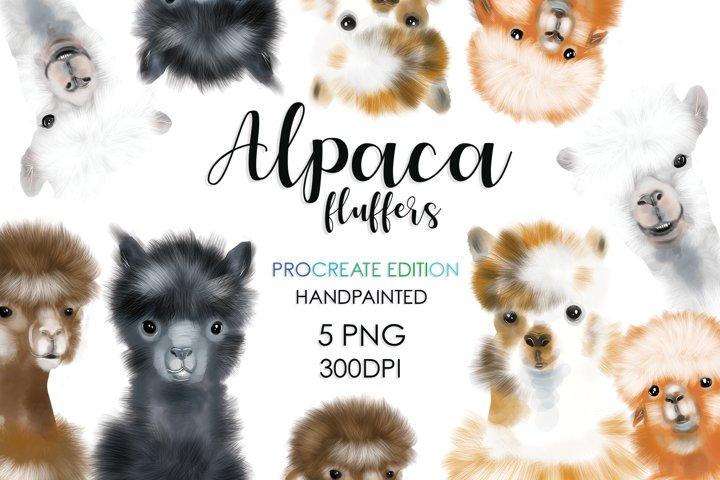 Llama, Cute Animals, Animal Bundle, Sublimation Bundle, Cute
