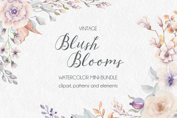 Vintage blush watercolor blooms