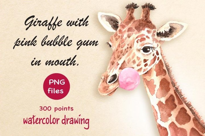Giraffe with pink chewing gum in its mouth