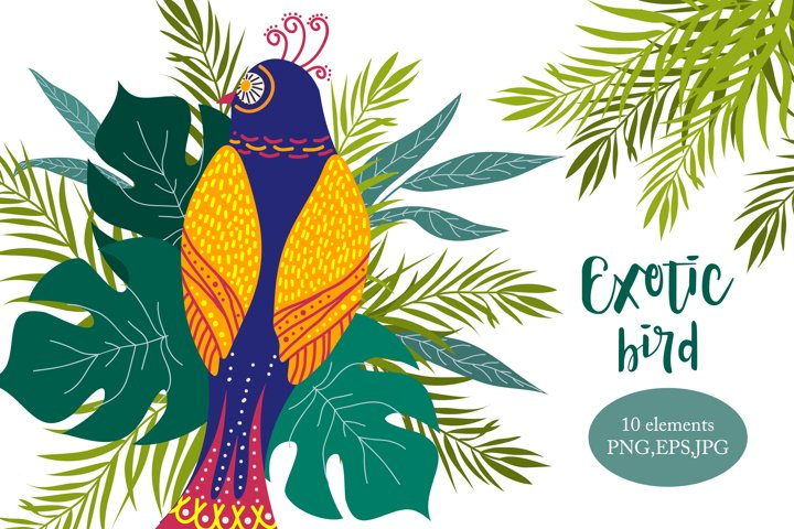 Cute exotic bird Tropical leaves clip-art Seamless patterns
