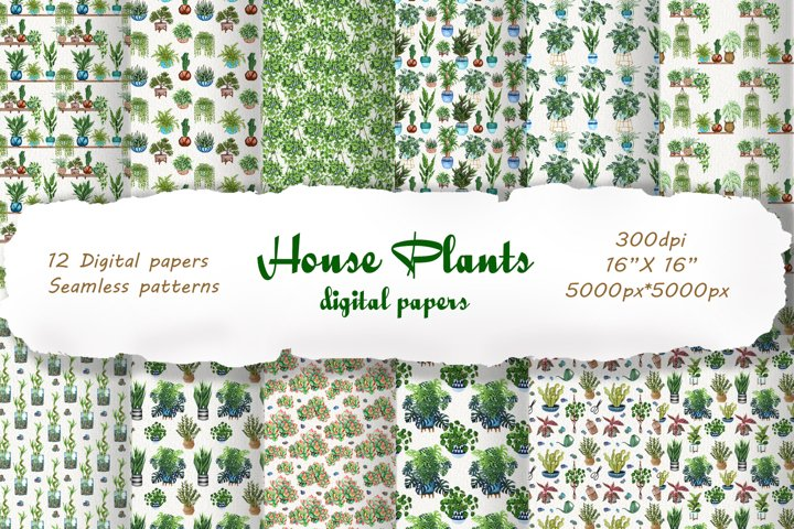 12 House Plants Seamless Patterns PNG