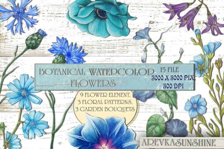 Watercolor garden wildflowers
