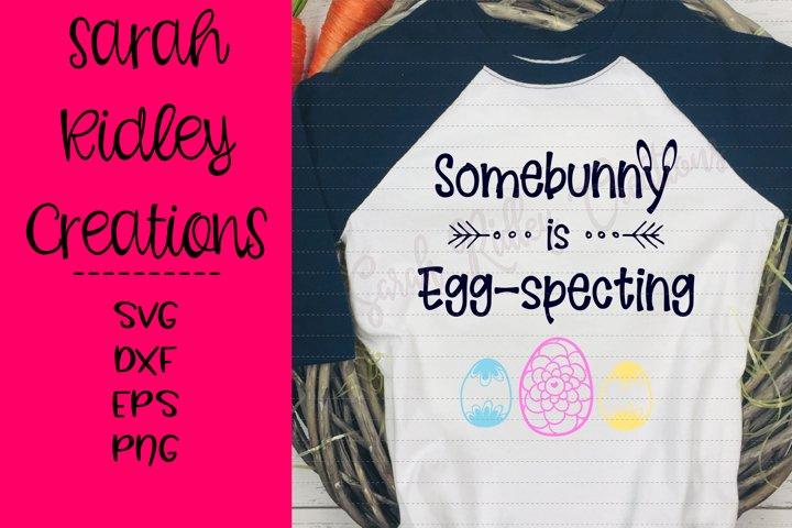 Somebunny is Eggspecting, Easter SVG, Pregnancy SVG