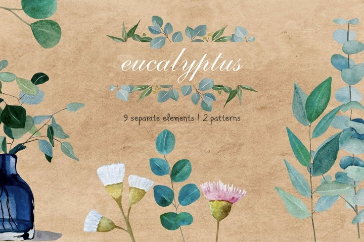 Watercolor Eucalyptus Leaves and Flowers