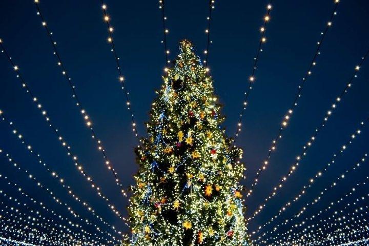 Christmas tree with colorful lights.