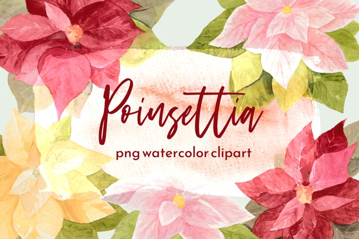 Painted Holiday Poinsettia Watercolor Clipart Set