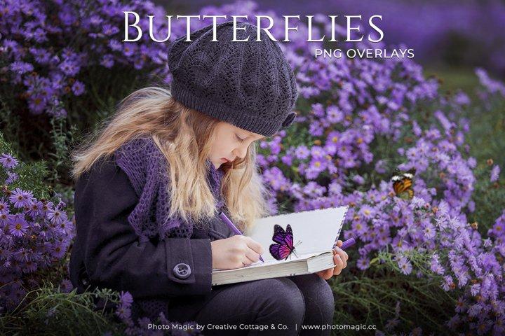 Fantasy Butterflies Photo Overlays