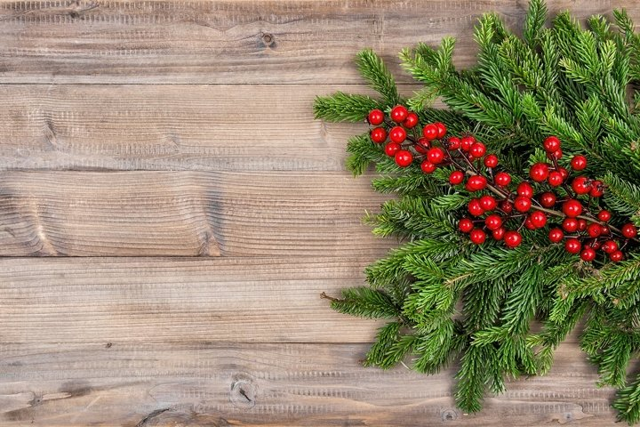 Christmas tree branches red berries wooden background