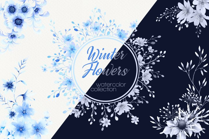 Winter Flowers watercolor floral collection