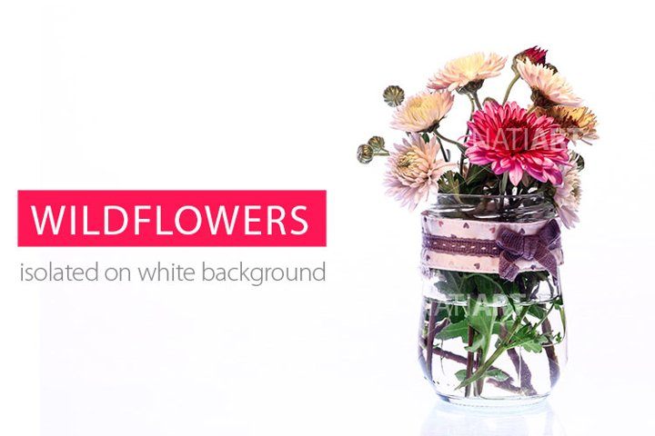 Wildflowers in a transparent vase on a white background.