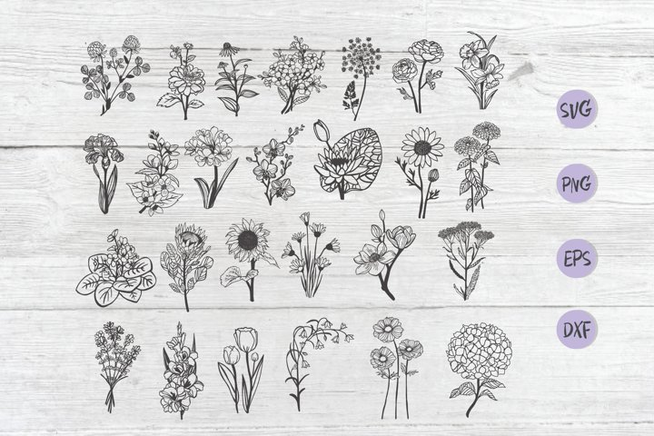 Gardening Flowers svg , Hand Drawn Flower Clipart, botanical