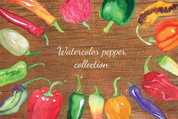 Watercolor pepper clipart