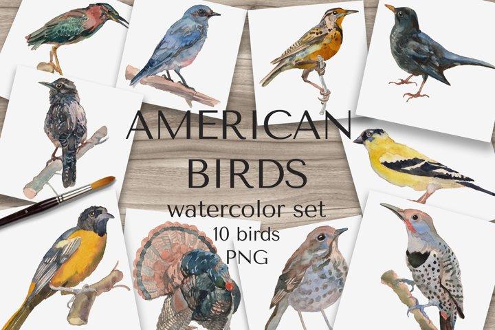 American Birds Watercolor Set
