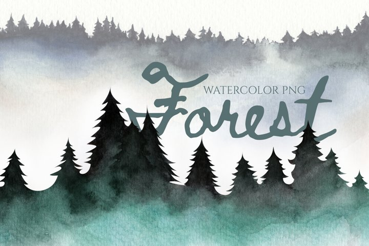 PNG Forest in the fog. Pine trees. mist, smoke in the trees