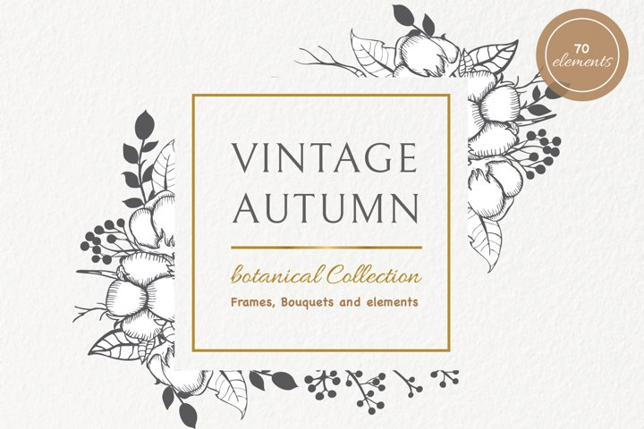 Vintage Autumn Botanical Collection