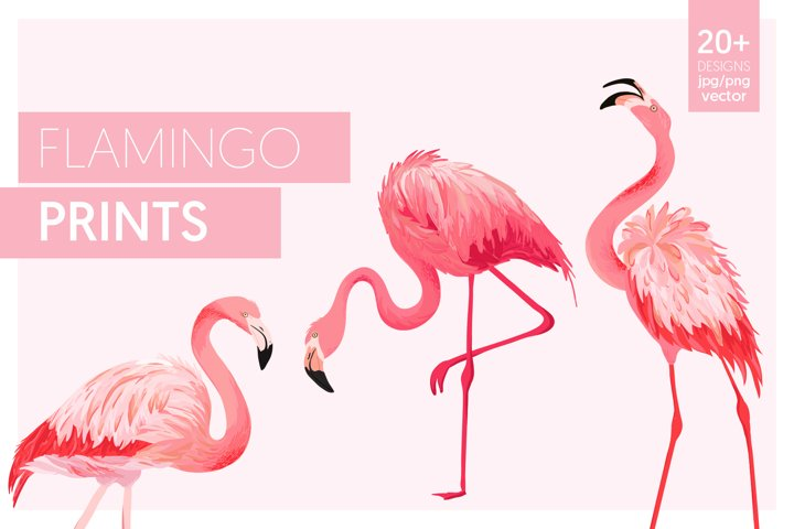 Flamingo and Flowers Design Kit