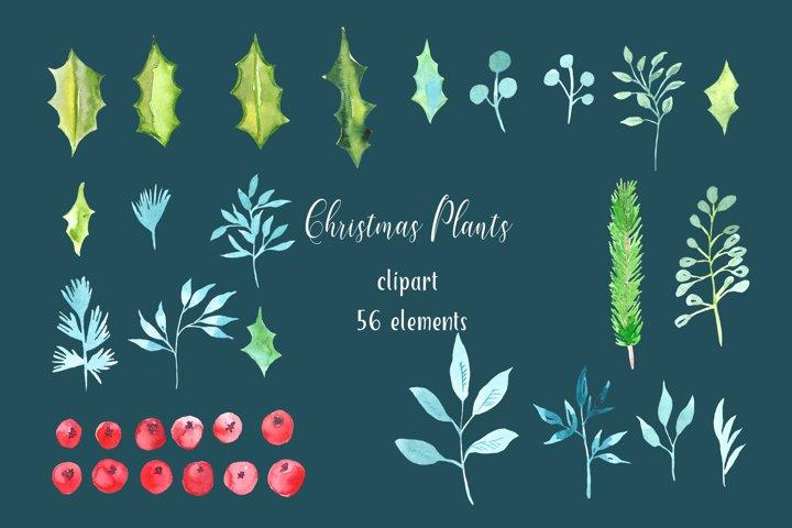Christmas Winter Floral Decor Clipart Watercolor - Christmas