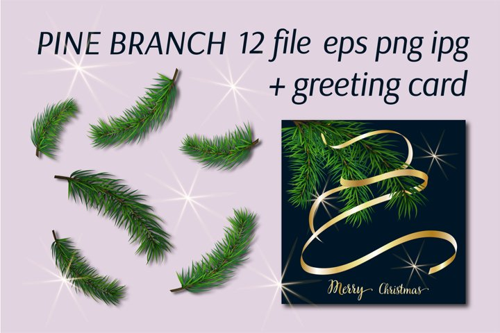 Christmas tree. Greeting card. Green pine branch.