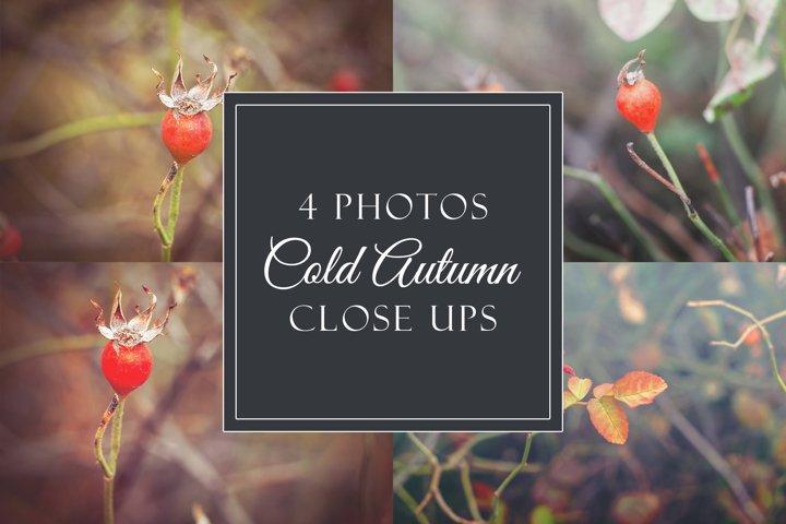 4 cold autumn photos example
