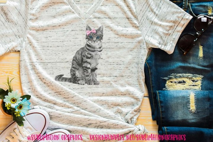 Grey Cat With Bow & Glasses Sublimation Digital Download