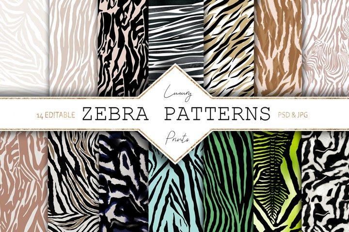 Zebra  Animal Print Bundle