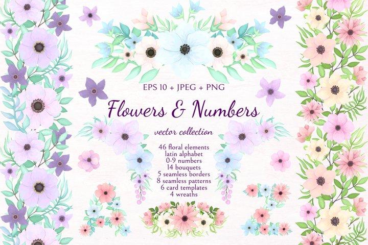 Flowers & Numbers