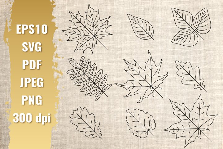 Black outline of autumn leaves. SVG bundle.