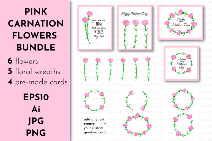 Mothers Day Bundle with Pink Carnation Flowers
